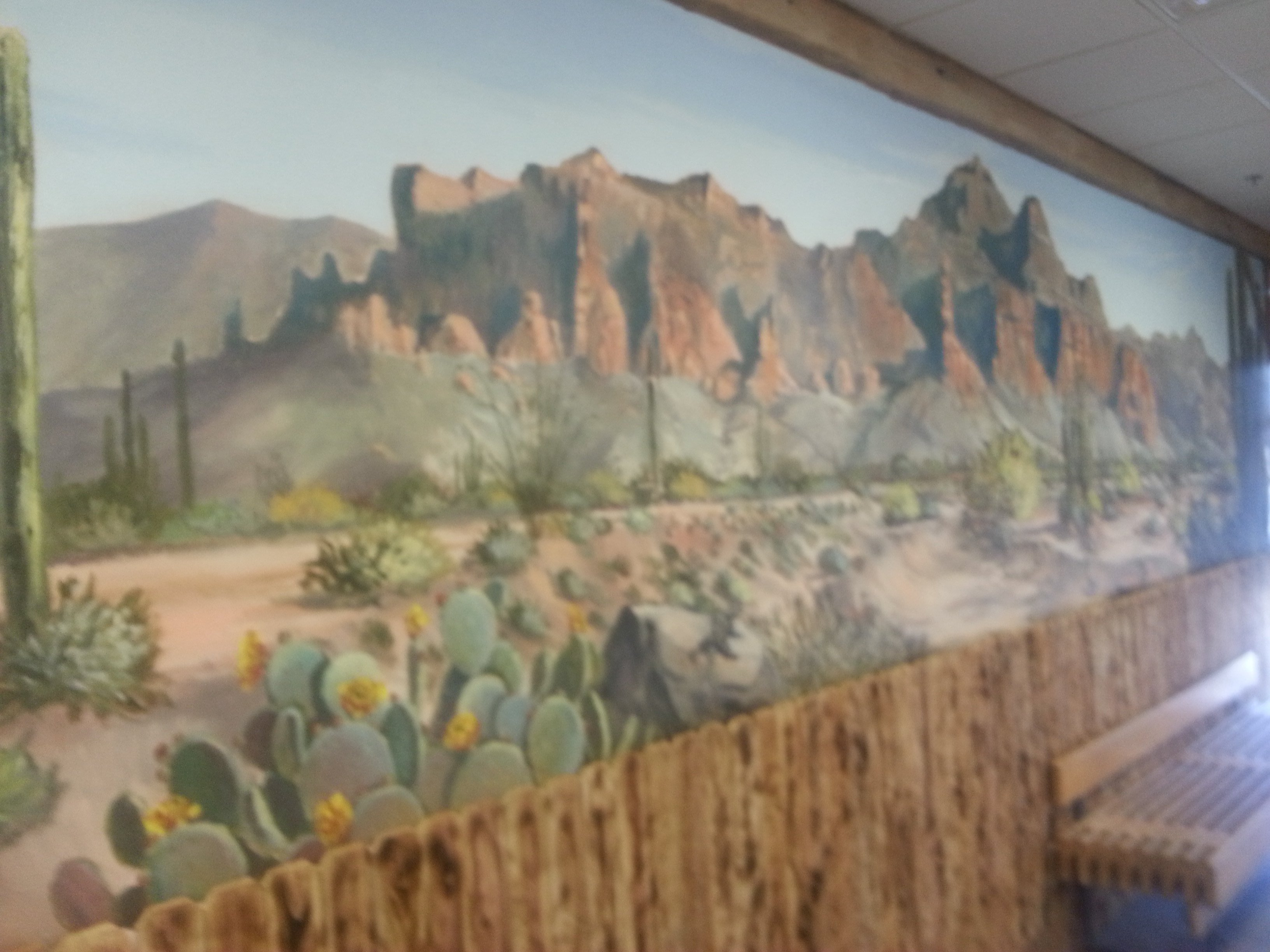 Arizona commercial art gallery i love murals by gina ribaudo for Commercial mural painting